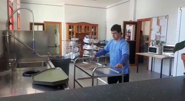 Centro discapacidad intelectual dúrcal Granada empleo personalizado