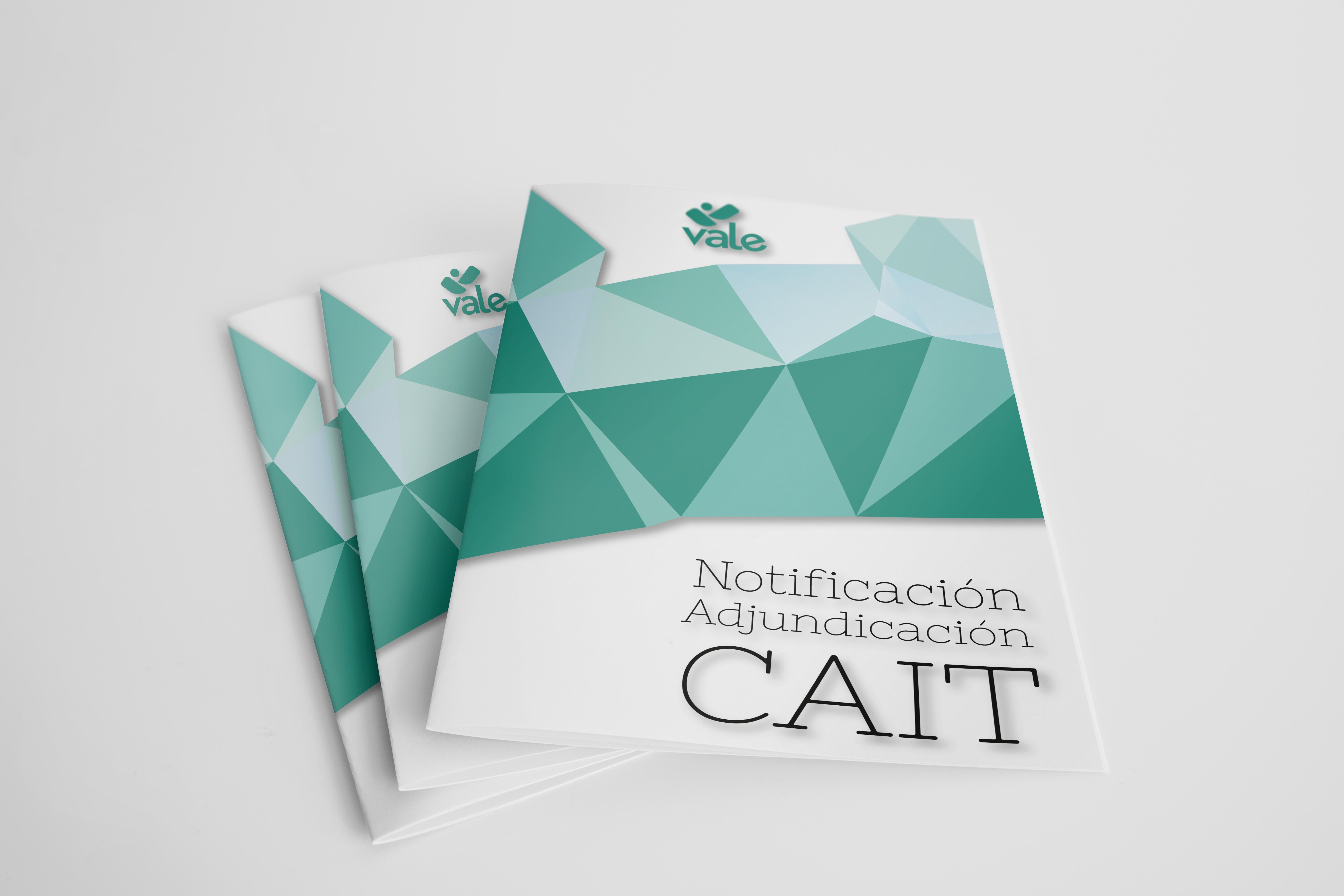 Notificación Adjudicación CAIT