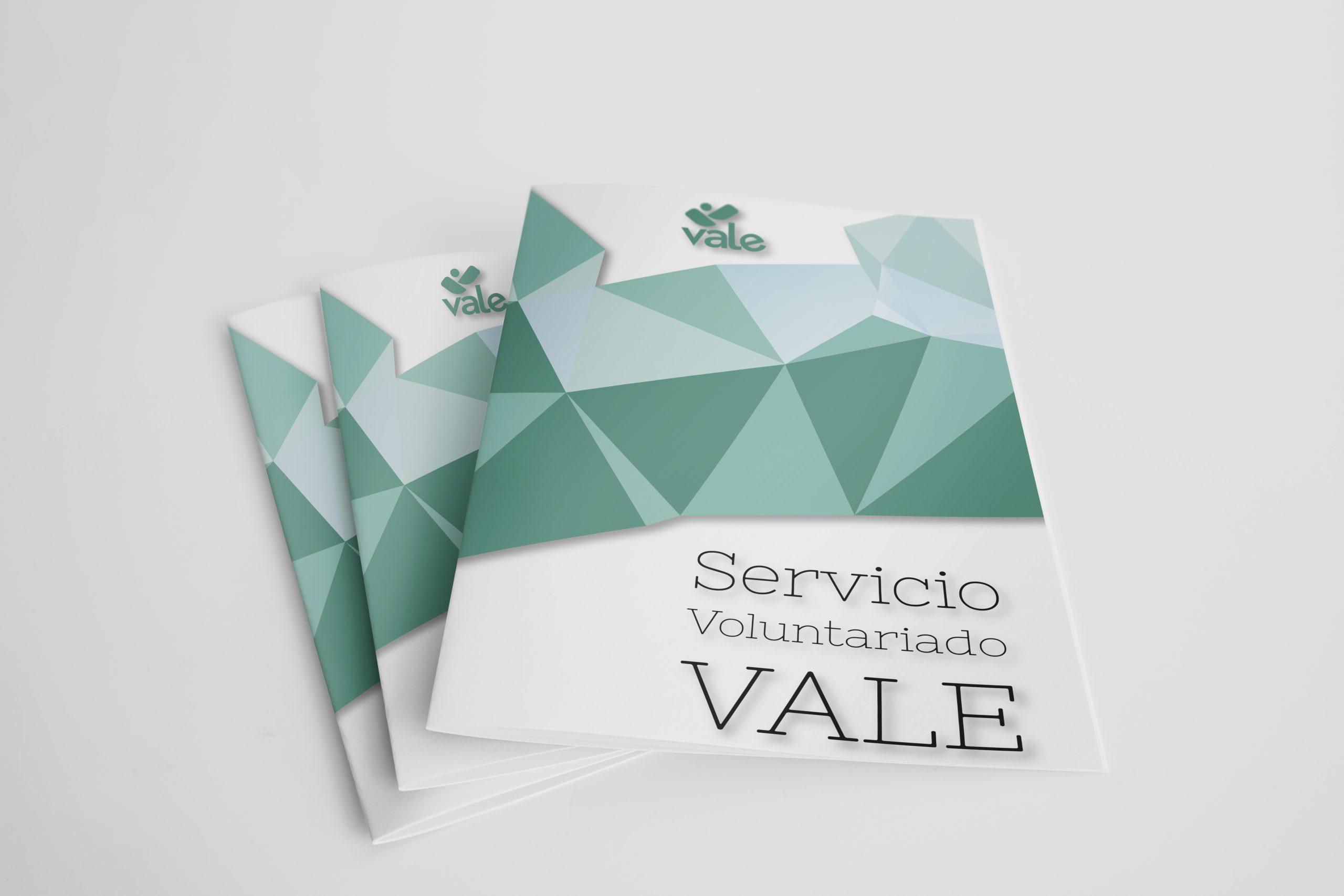 Servicio Voluntariado VALE