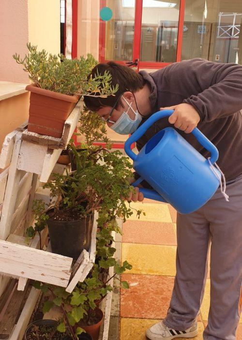 Pepe regando Plantas