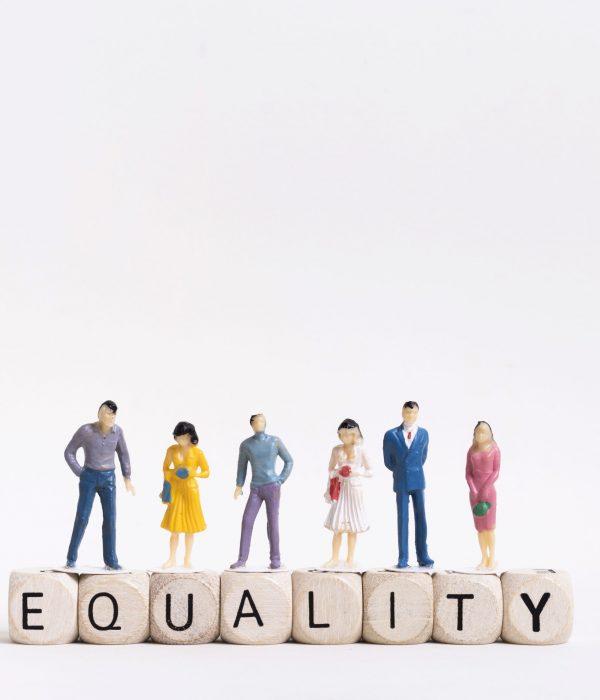 Convención derechos personas discapacidad intelectual